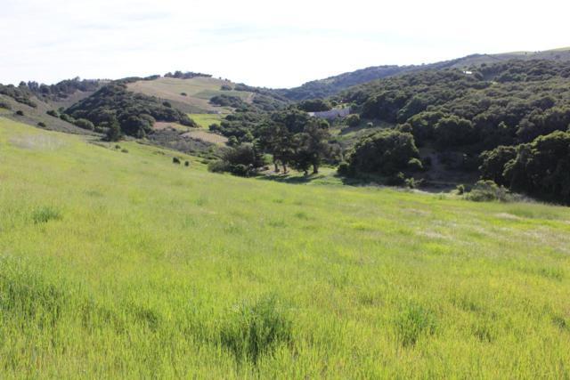 11701 Camino Escondido Rd, Carmel Valley, CA 93924 (#ML81461458) :: Intero Real Estate