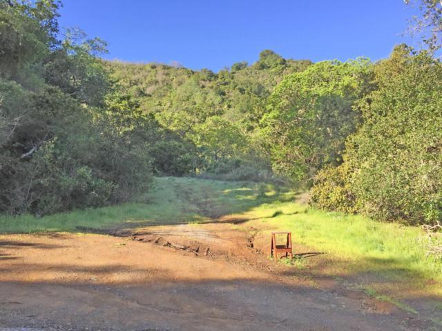 0 Oak Valley Rd, Morgan Hill, CA 95037 (#ML81565720) :: Intero Real Estate
