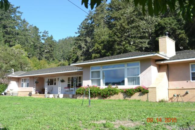 4931 Pescadero Creek Rd, Pescadero, CA 94060 (#ML81614937) :: Astute Realty Inc