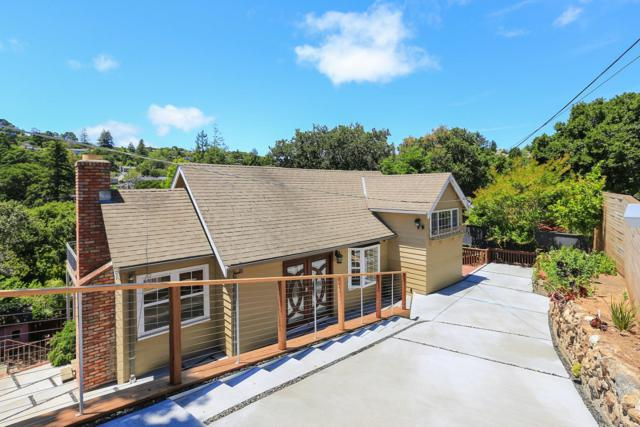 1783 Terrace Dr, Belmont, CA 94002 (#ML81656046) :: The Gilmartin Group