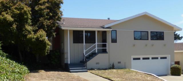 302 Newman Dr, South San Francisco, CA 94080 (#ML81656340) :: Carrington Real Estate Services