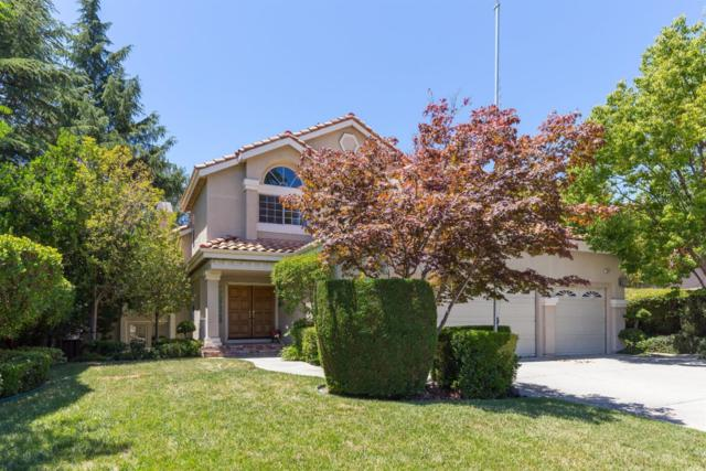 7091 Kindra Hill Dr, San Jose, CA 95120 (#ML81667134) :: The Goss Real Estate Group, Keller Williams Bay Area Estates