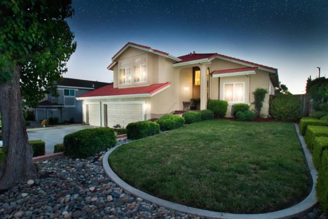 2721 Darknell Way, San Jose, CA 95148 (#ML81667925) :: Carrington Real Estate Services