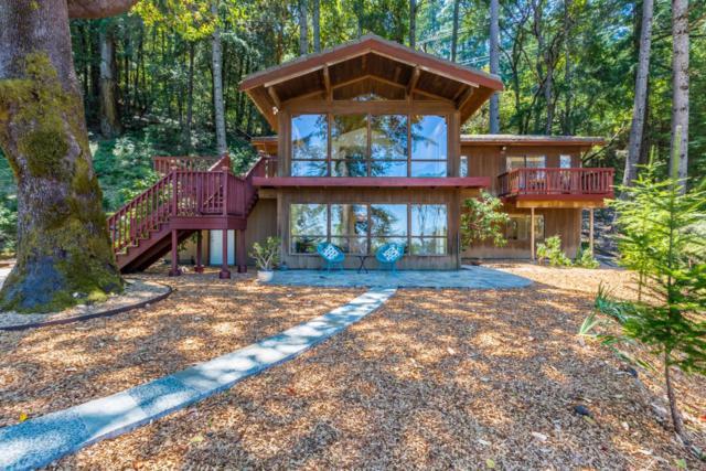 1650 Bear Gulch Rd, Woodside, CA 94062 (#ML81668933) :: The Kulda Real Estate Group