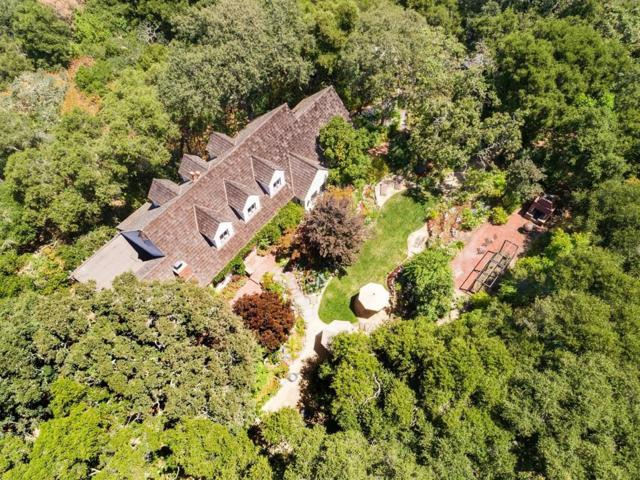 234 Eleanor Dr, Woodside, CA 94062 (#ML81669859) :: The Kulda Real Estate Group
