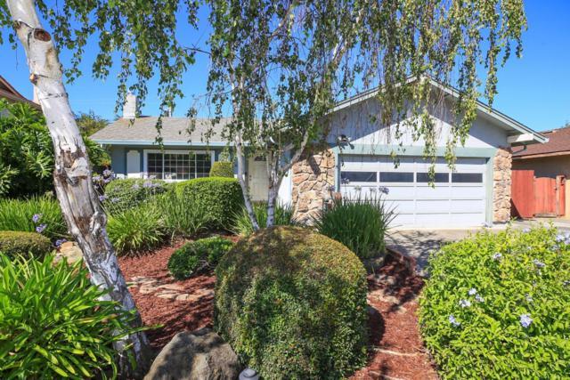 1479 Mardan Dr, San Jose, CA 95132 (#ML81671145) :: von Kaenel Real Estate Group