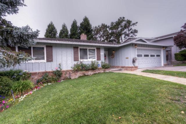 3346 Shasta Dr, San Mateo, CA 94403 (#ML81673762) :: Carrington Real Estate Services