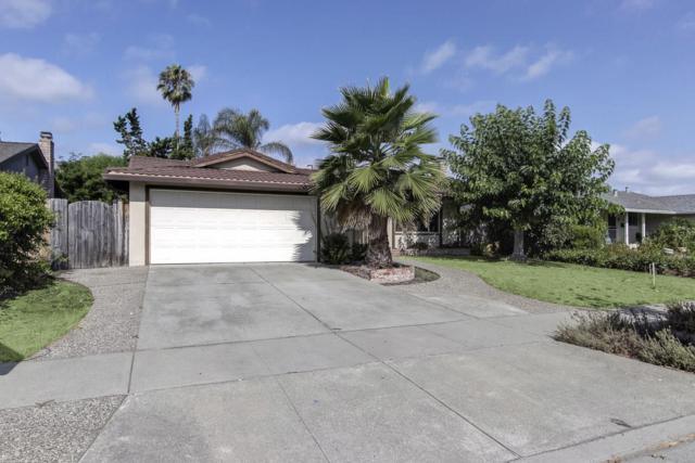 5879 Tandera Ave, San Jose, CA 95123 (#ML81674228) :: The Goss Real Estate Group, Keller Williams Bay Area Estates