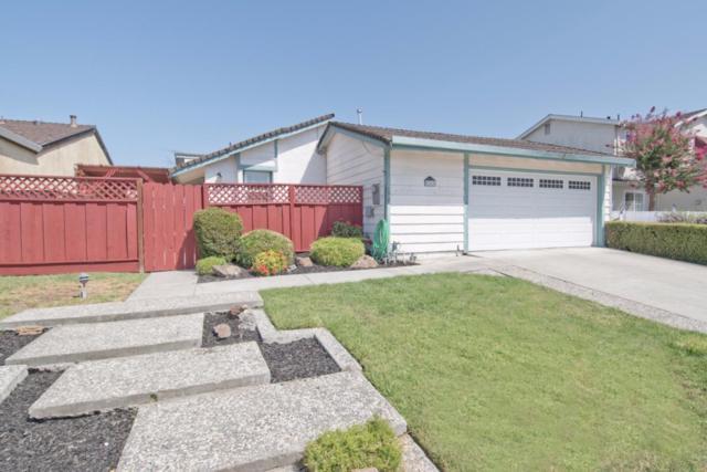 5342 Hansell Dr, San Jose, CA 95123 (#ML81674292) :: The Goss Real Estate Group, Keller Williams Bay Area Estates