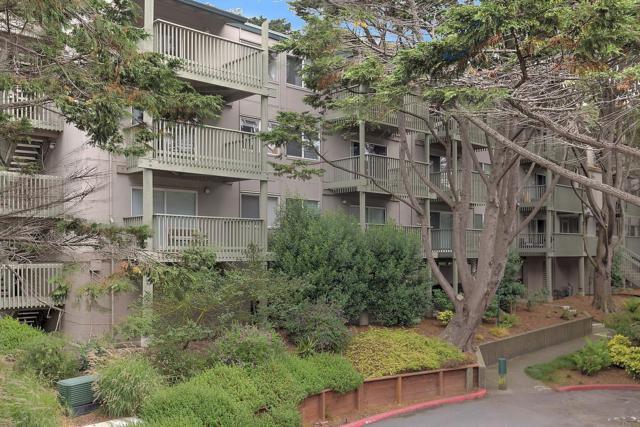 359 Half Moon Ln 311, Daly City, CA 94015 (#ML81674346) :: Brett Jennings Real Estate Experts