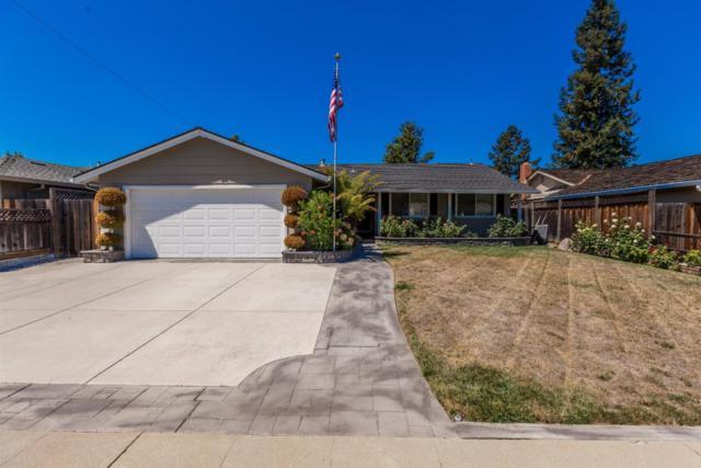 1607 Ronald Ct, San Jose, CA 95118 (#ML81674413) :: The Goss Real Estate Group, Keller Williams Bay Area Estates