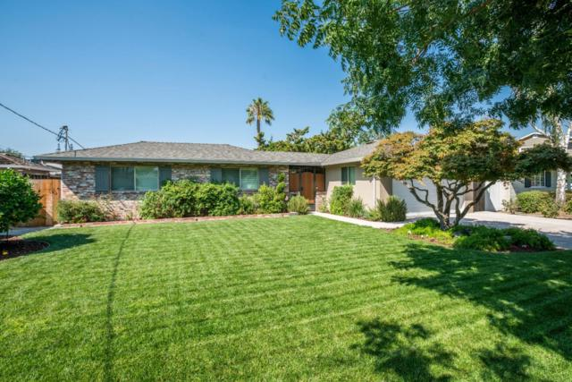 1723 Dolores Dr, San Jose, CA 95125 (#ML81674515) :: Carrington Real Estate Services