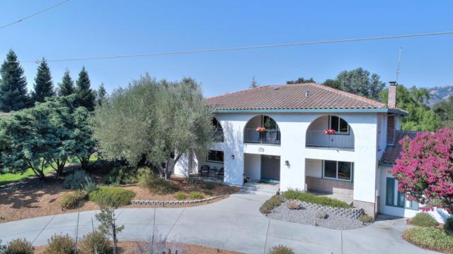 17430 Blue Jay Dr, Morgan Hill, CA 95037 (#ML81674747) :: Brett Jennings Real Estate Experts