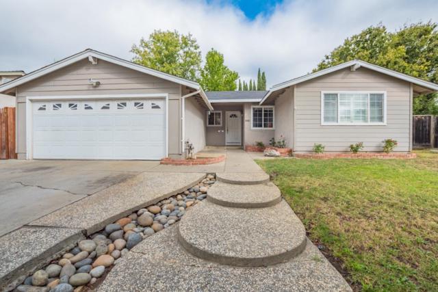 2929 Edenbank Ct, San Jose, CA 95148 (#ML81678096) :: The Goss Real Estate Group, Keller Williams Bay Area Estates