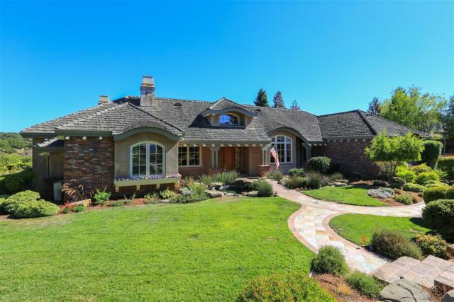 27466 Sunrise Farm Rd, Los Altos Hills, CA 94022 (#ML81678739) :: The Kulda Real Estate Group