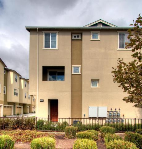 1290 Nestwood Way, Milpitas, CA 95035 (#ML81678877) :: The Goss Real Estate Group, Keller Williams Bay Area Estates