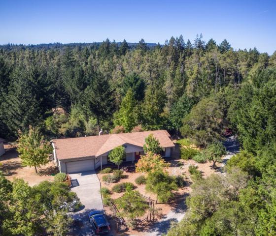 119 Mcgivern Way, Santa Cruz, CA 95060 (#ML81678984) :: von Kaenel Real Estate Group
