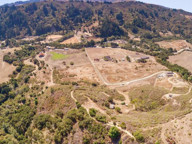 000 La Honda, San Gregorio, CA 94074 (#ML81679686) :: Brett Jennings Real Estate Experts