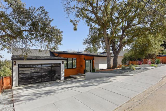 345 Oakview Dr, San Carlos, CA 94070 (#ML81680614) :: Keller Williams - The Rose Group