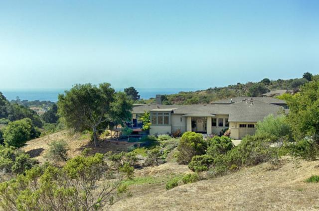141 Castillo Ct, Aptos, CA 95003 (#ML81681015) :: Michael Lavigne Real Estate Services