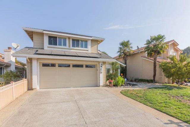 2411 Lascar Pl, San Jose, CA 95124 (#ML81681175) :: Carrington Real Estate Services
