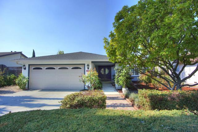 285 Falcato Dr, Milpitas, CA 95035 (#ML81681586) :: The Goss Real Estate Group, Keller Williams Bay Area Estates