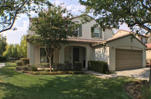 19141 Saffron Dr, Morgan Hill, CA 95037 (#ML81681724) :: Carrington Real Estate Services