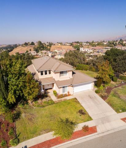 6267 Running Springs Rd, San Jose, CA 95135 (#ML81681879) :: The Goss Real Estate Group, Keller Williams Bay Area Estates