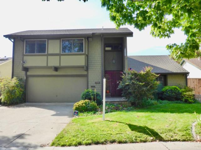 7135 Via Romera, San Jose, CA 95139 (#ML81682045) :: Carrington Real Estate Services