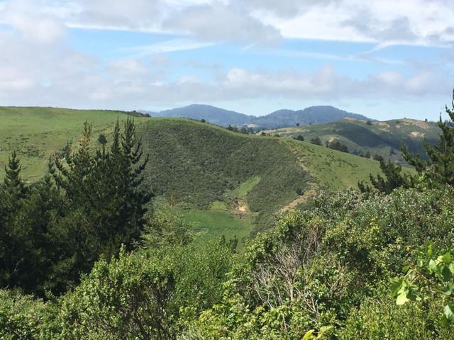 000 Higgins Canyon, Half Moon Bay, CA 94019 (#ML81682052) :: The Kulda Real Estate Group