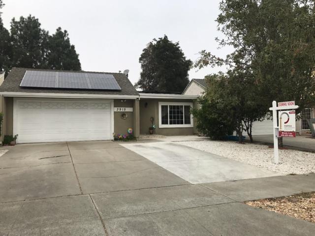 3915 Marlette Dr, San Jose, CA 95121 (#ML81682076) :: Carrington Real Estate Services