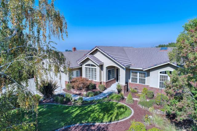 5901 Mountain Meadow Ct, San Jose, CA 95135 (#ML81682184) :: Brett Jennings Real Estate Experts