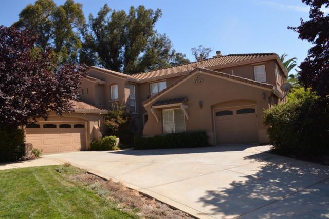 2612 Meadowleaf Ct, San Jose, CA 95135 (#ML81682250) :: Brett Jennings Real Estate Experts