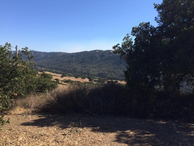 Via Los Tulares, Carmel Valley, CA 93924 (#ML81682264) :: RE/MAX Real Estate Services