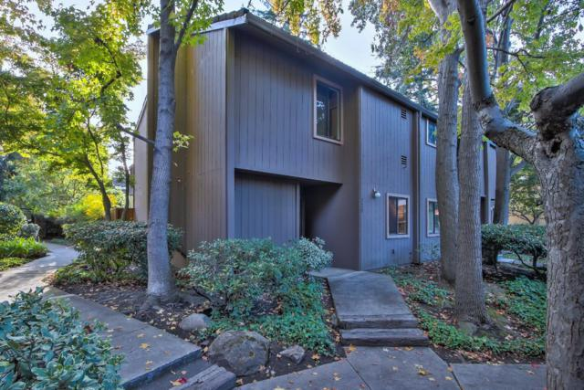 229 Horizon Ave, Mountain View, CA 94043 (#ML81684680) :: The Goss Real Estate Group, Keller Williams Bay Area Estates