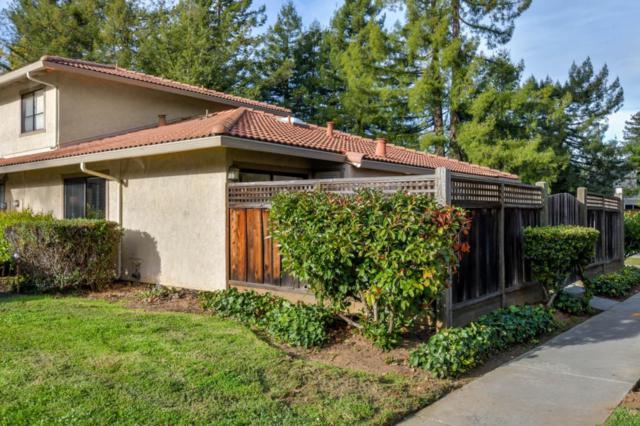 148 Peach Ter, Santa Cruz, CA 95060 (#ML81684774) :: Michael Lavigne Real Estate Services