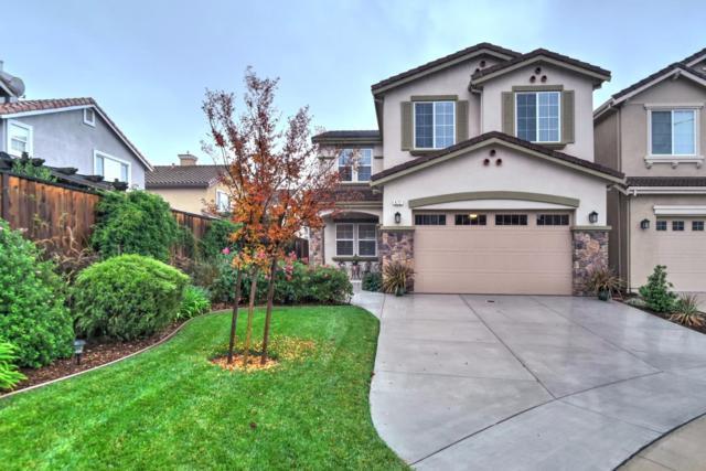672 Saint Timothy Ct, Morgan Hill, CA 95037 (#ML81685132) :: The Goss Real Estate Group, Keller Williams Bay Area Estates