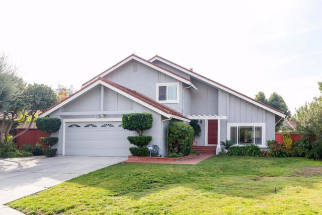 3221 Redglen Ct, San Jose, CA 95135 (#ML81685439) :: von Kaenel Real Estate Group