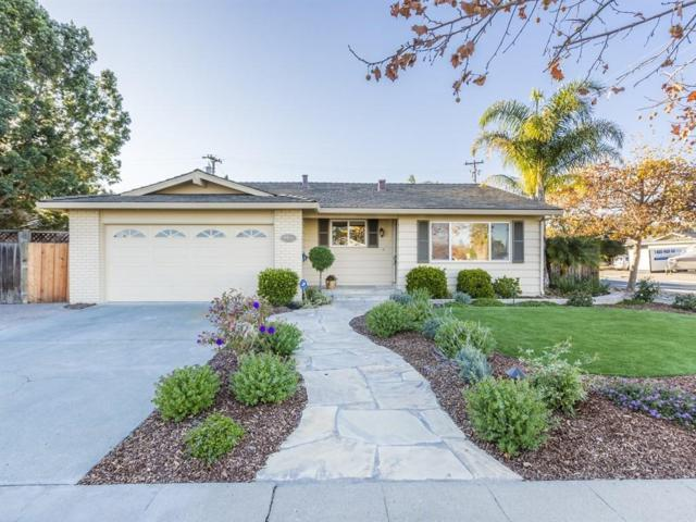 4451 Tomrick Ave, San Jose, CA 95124 (#ML81686970) :: Carrington Real Estate Services