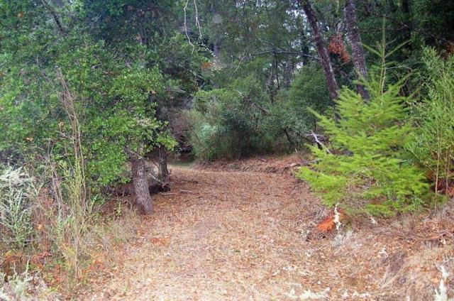 645 Fern Ridge, Felton, CA 95018 (#ML81687290) :: The Goss Real Estate Group, Keller Williams Bay Area Estates