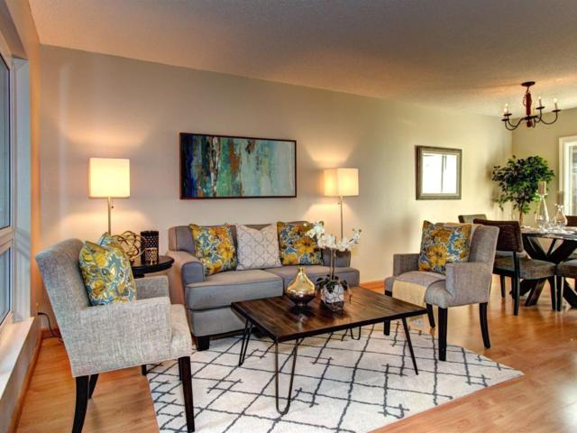 5070 Pine Tree Ter, Campbell, CA 95008 (#ML81689050) :: Intero Real Estate