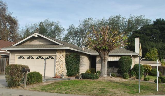 1658 Fallen Leaf Dr, Milpitas, CA 95035 (#ML81689428) :: The Goss Real Estate Group, Keller Williams Bay Area Estates