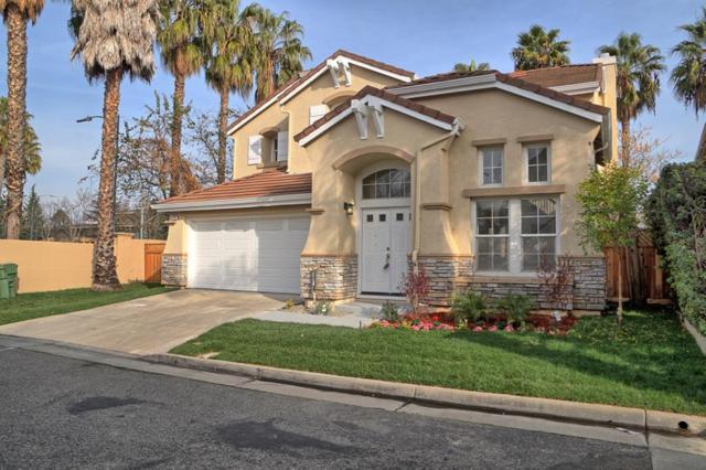 114 Coffeeberry Dr, San Jose, CA 95123 (#ML81689441) :: The Goss Real Estate Group, Keller Williams Bay Area Estates