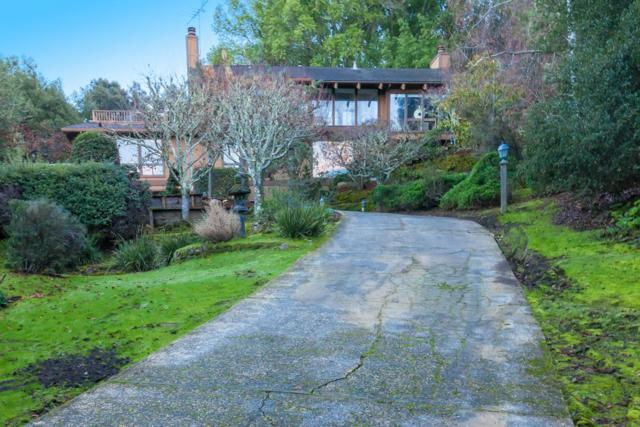 348 Ramona Rd, Portola Valley, CA 94028 (#ML81689716) :: The Goss Real Estate Group, Keller Williams Bay Area Estates