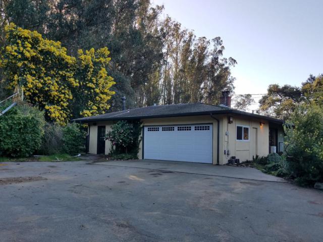 121 Pine Tree Ave, Aromas, CA 95004 (#ML81691238) :: Brett Jennings Real Estate Experts