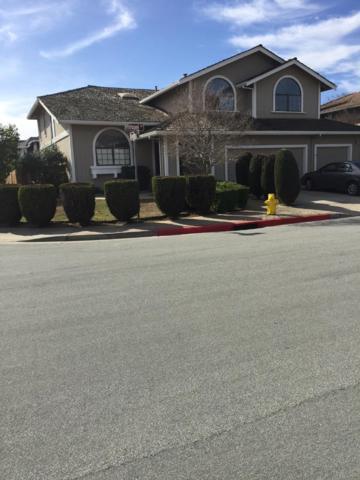 17395 Ringel Dr, Morgan Hill, CA 95037 (#ML81691545) :: Myrick Estates Team at Keller Williams