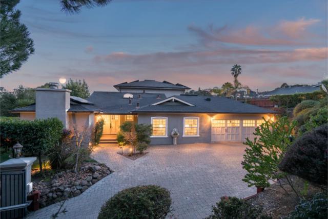 213 Wellington Dr, San Carlos, CA 94070 (#ML81691574) :: Brett Jennings Real Estate Experts