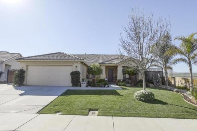 13491 S San Estevan Dr, Santa Nella, CA 95322 (#ML81691779) :: The Kulda Real Estate Group