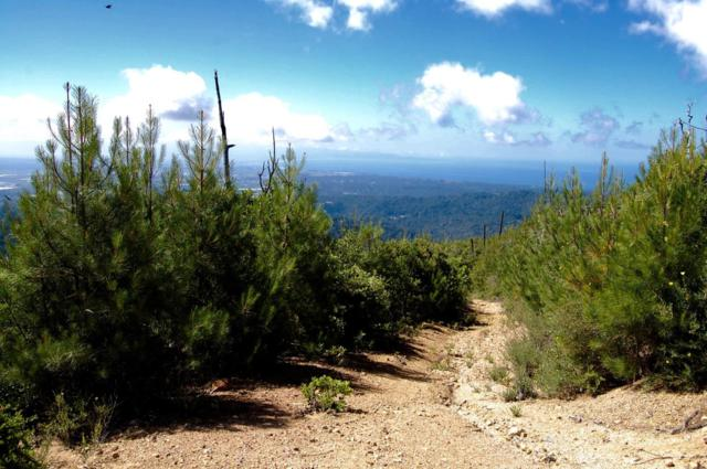 0 Eureka Canyon, Corralitos, CA 95076 (#ML81691954) :: The Kulda Real Estate Group