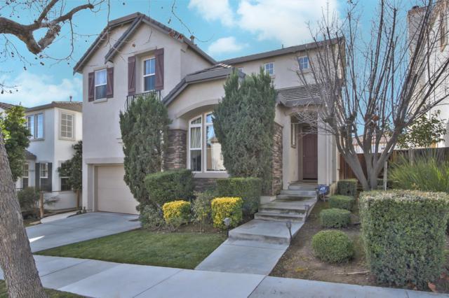 803 Canoas Creek Cir, San Jose, CA 95136 (#ML81692789) :: Astute Realty Inc
